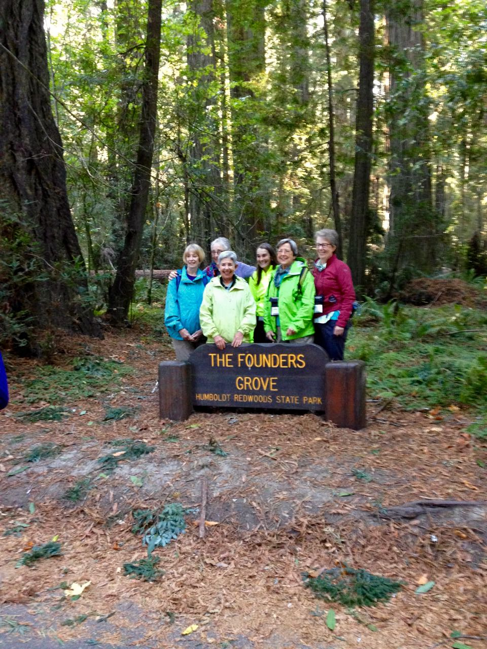 Redwoods 2017 10 01 3 Of 244