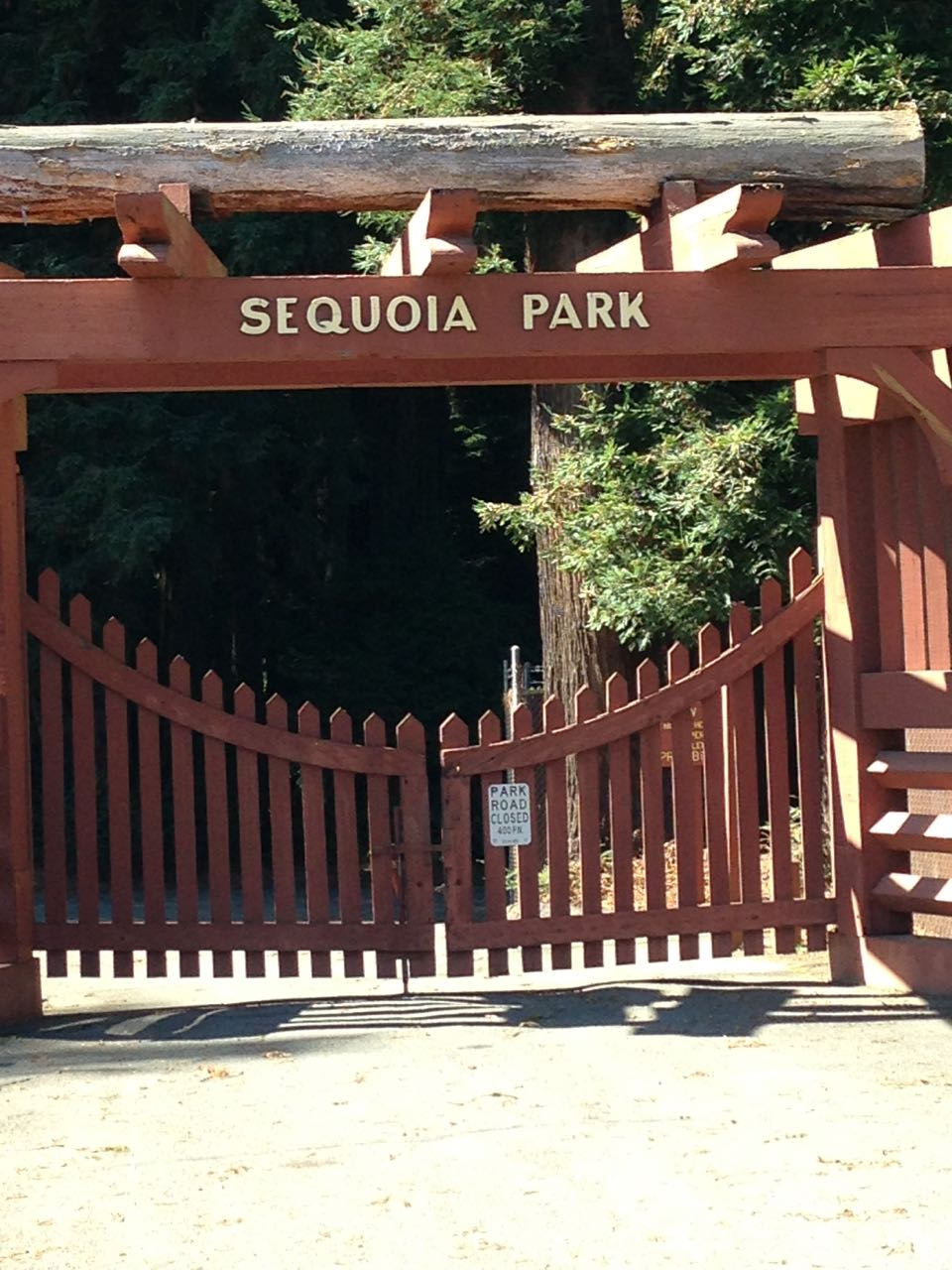 Redwoods 2017 10 01 78 Of 244
