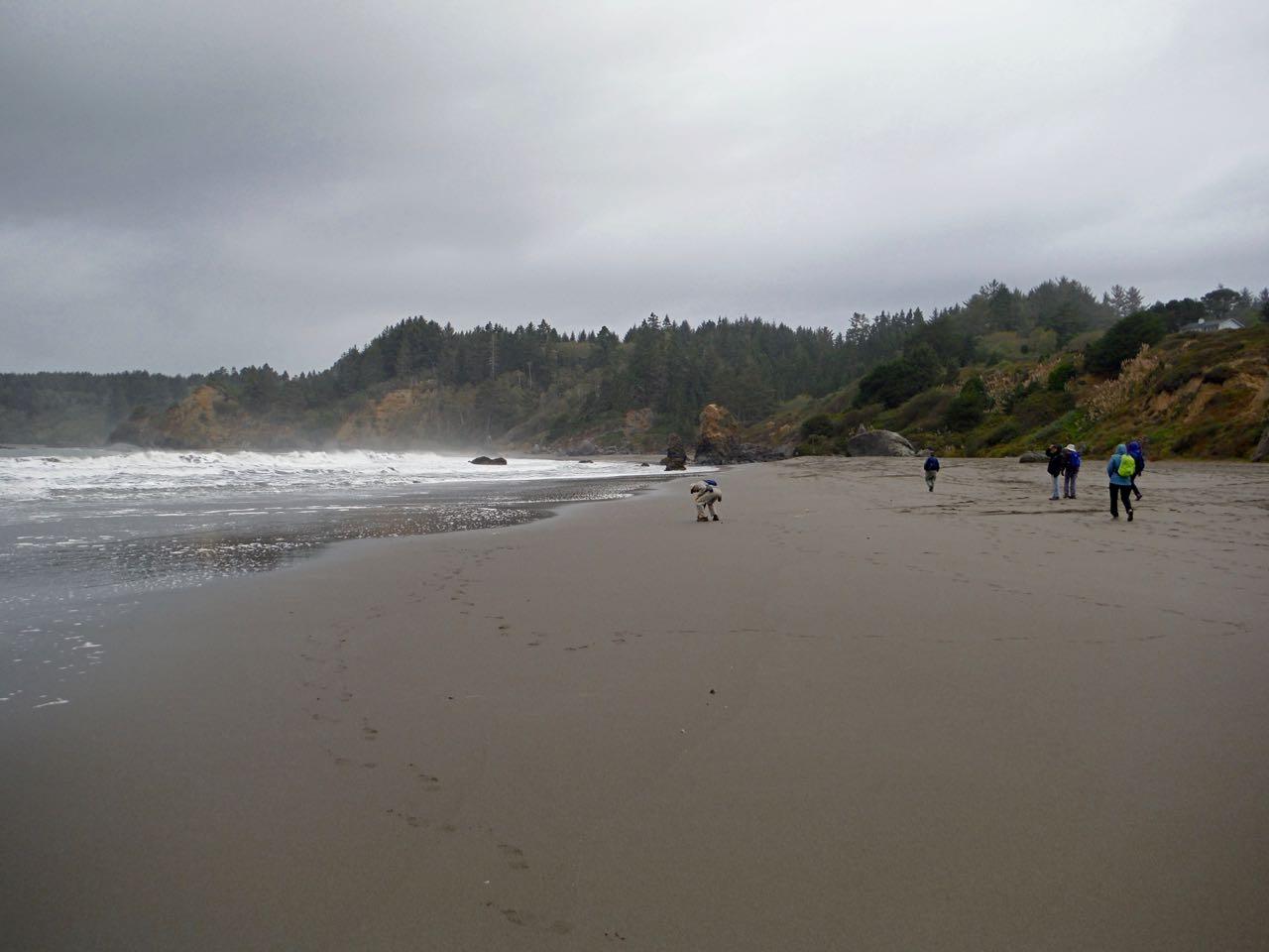 Redwoods 2017 10 08 134 Of 287