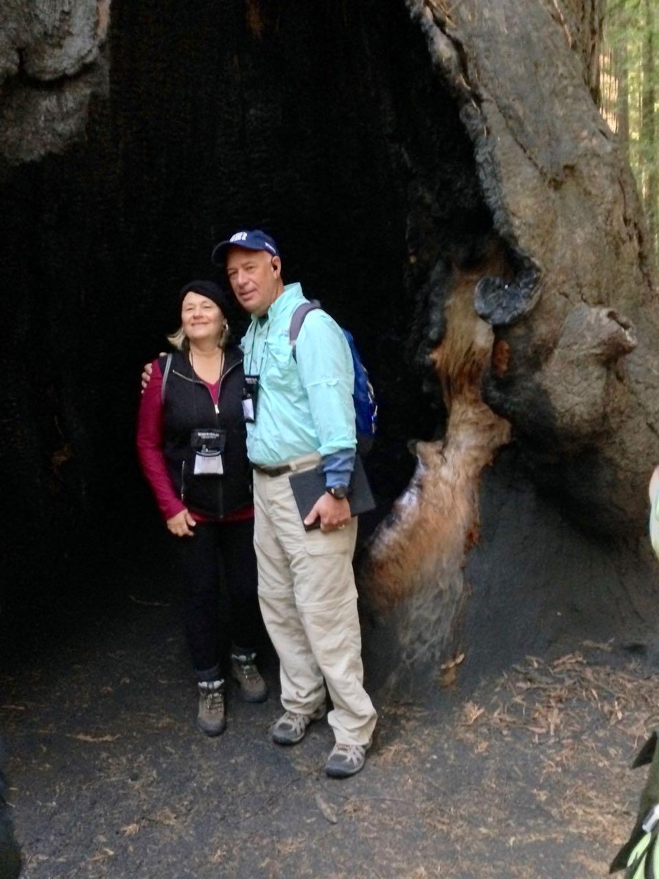 Redwoods 2017 10 08 15 Of 287