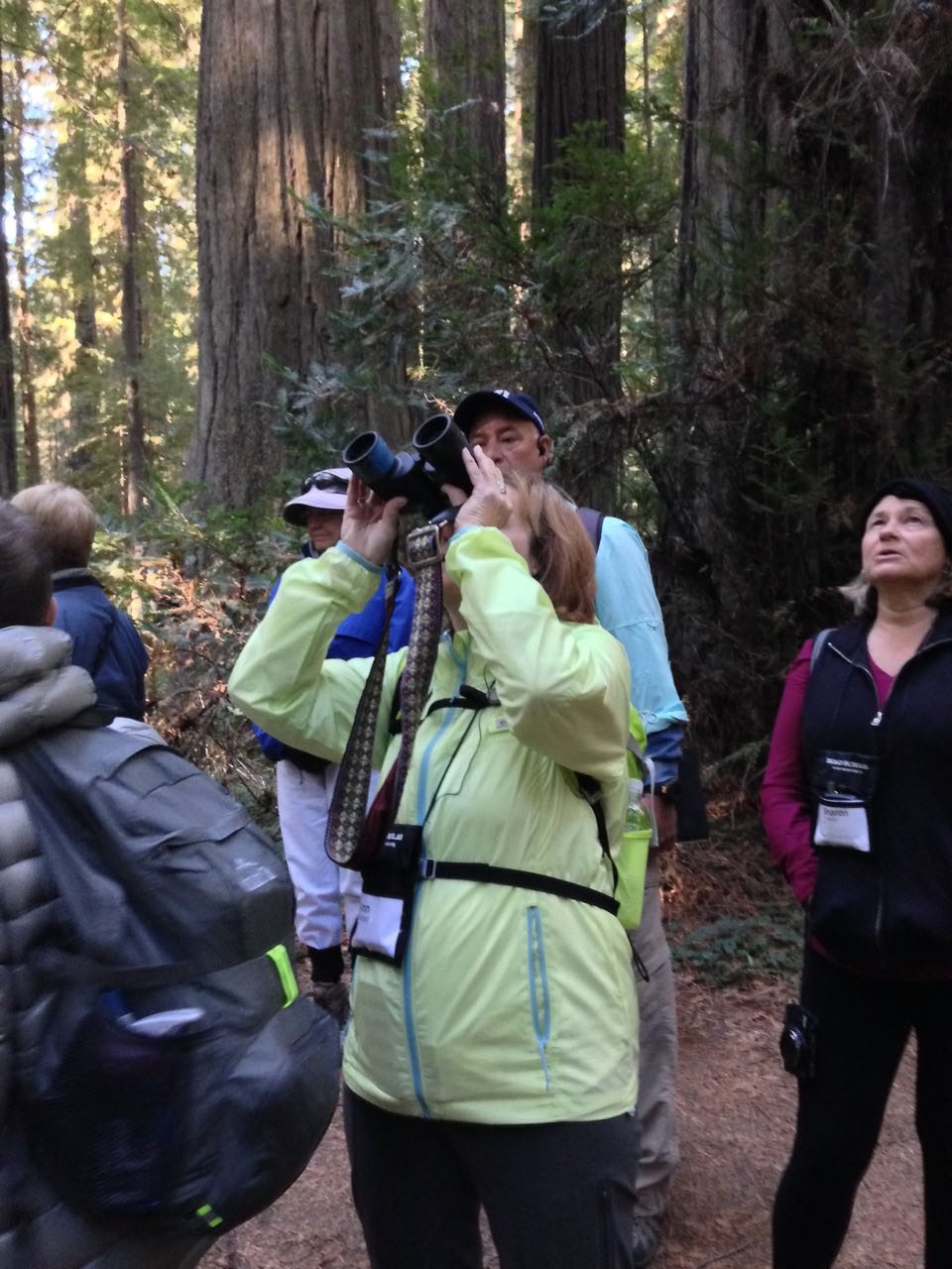 Redwoods 2017 10 08 16 Of 287