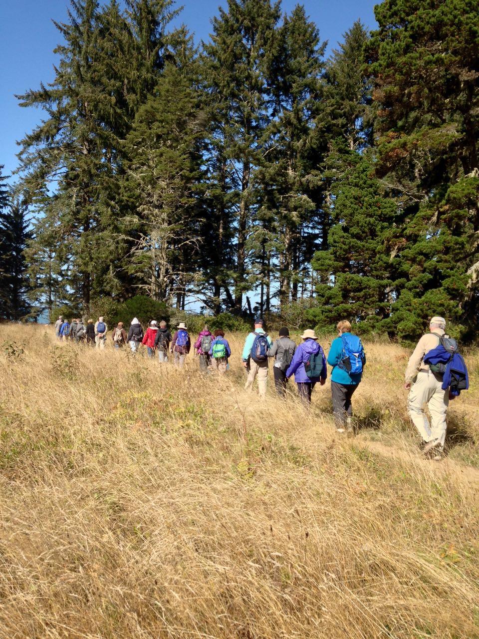 Redwoods 2017 10 08 169 Of 287