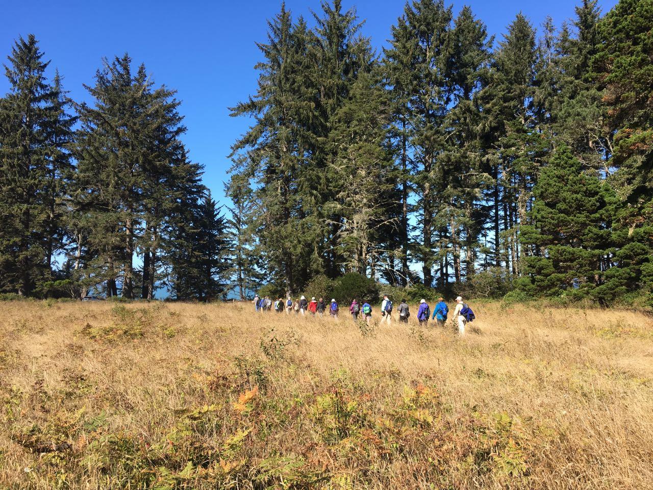 Redwoods 2017 10 08 175 Of 287