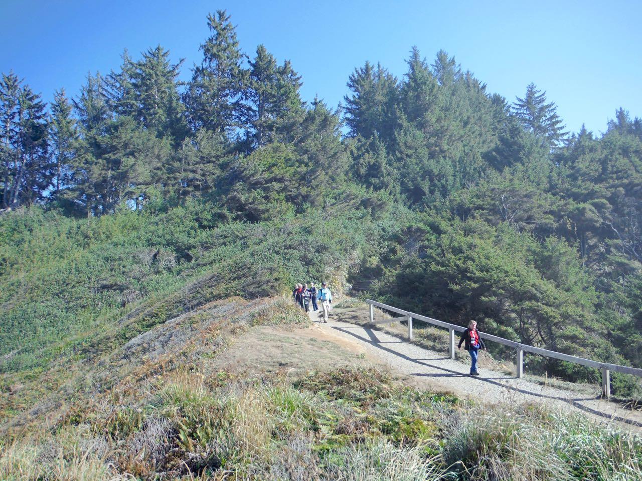 Redwoods 2017 10 08 179 Of 287