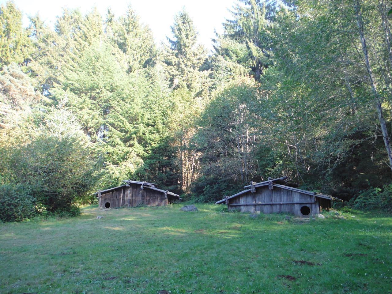 Redwoods 2017 10 08 192 Of 287