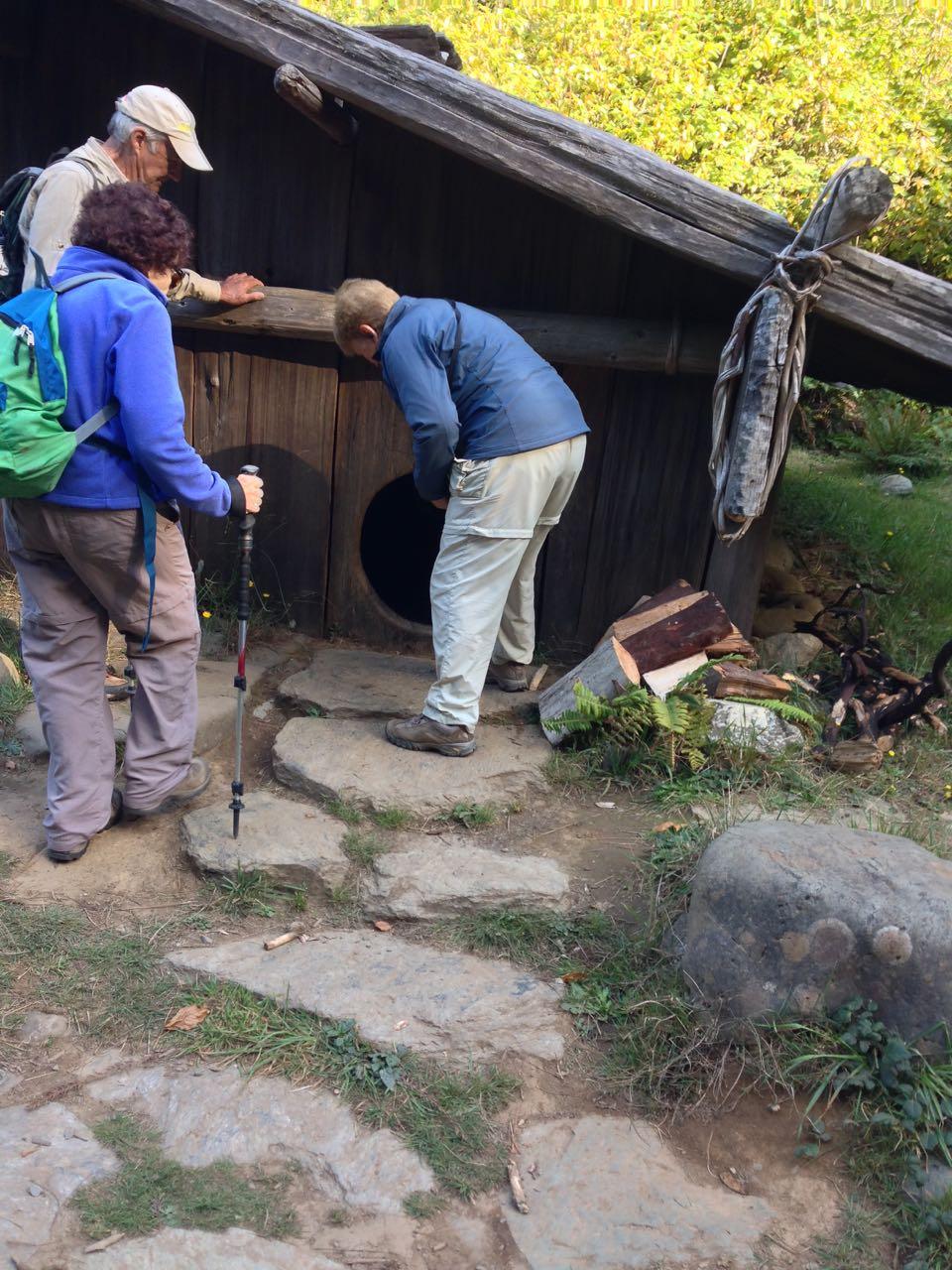 Redwoods 2017 10 08 195 Of 287