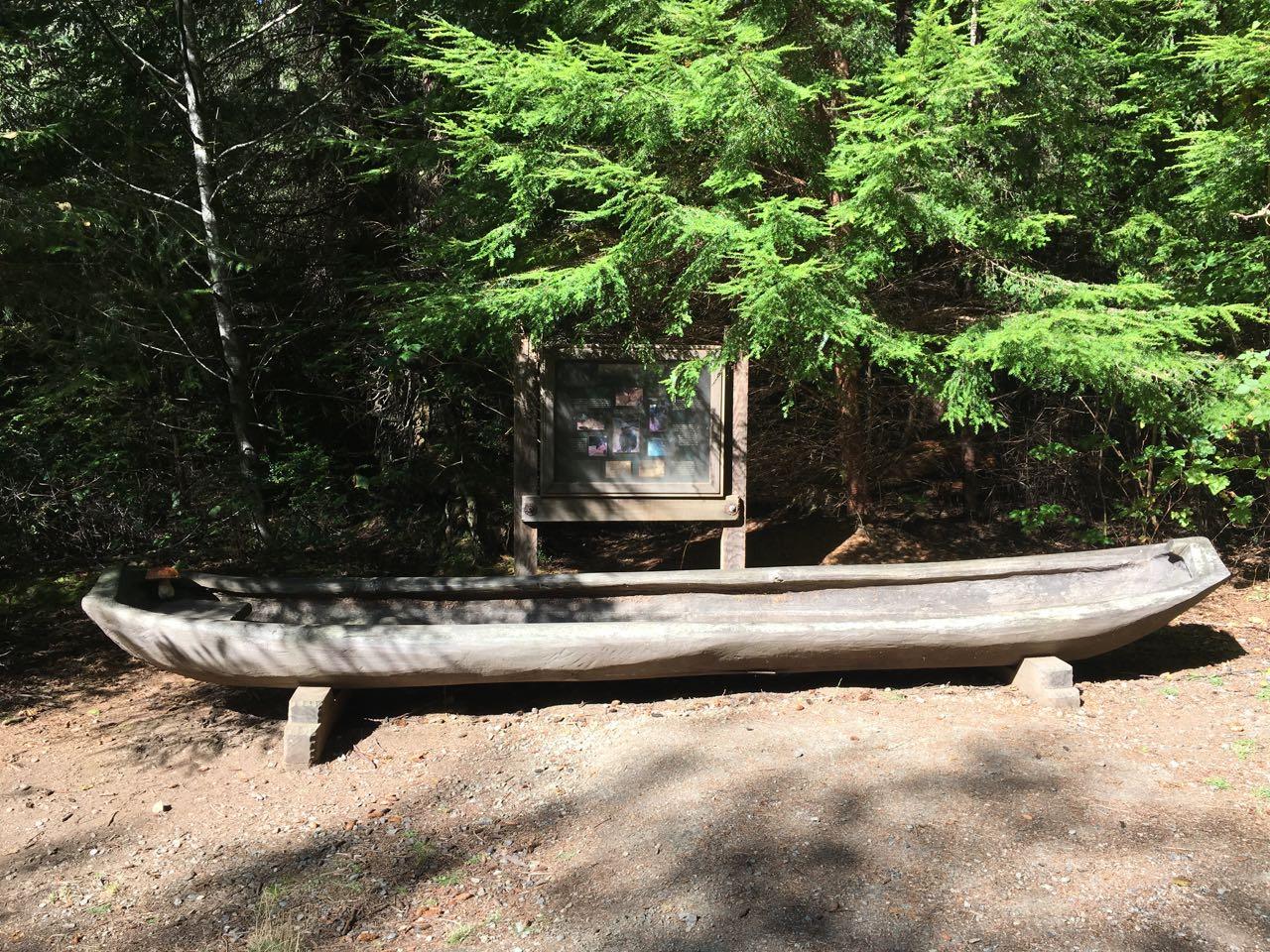 Redwoods 2017 10 08 198 Of 287