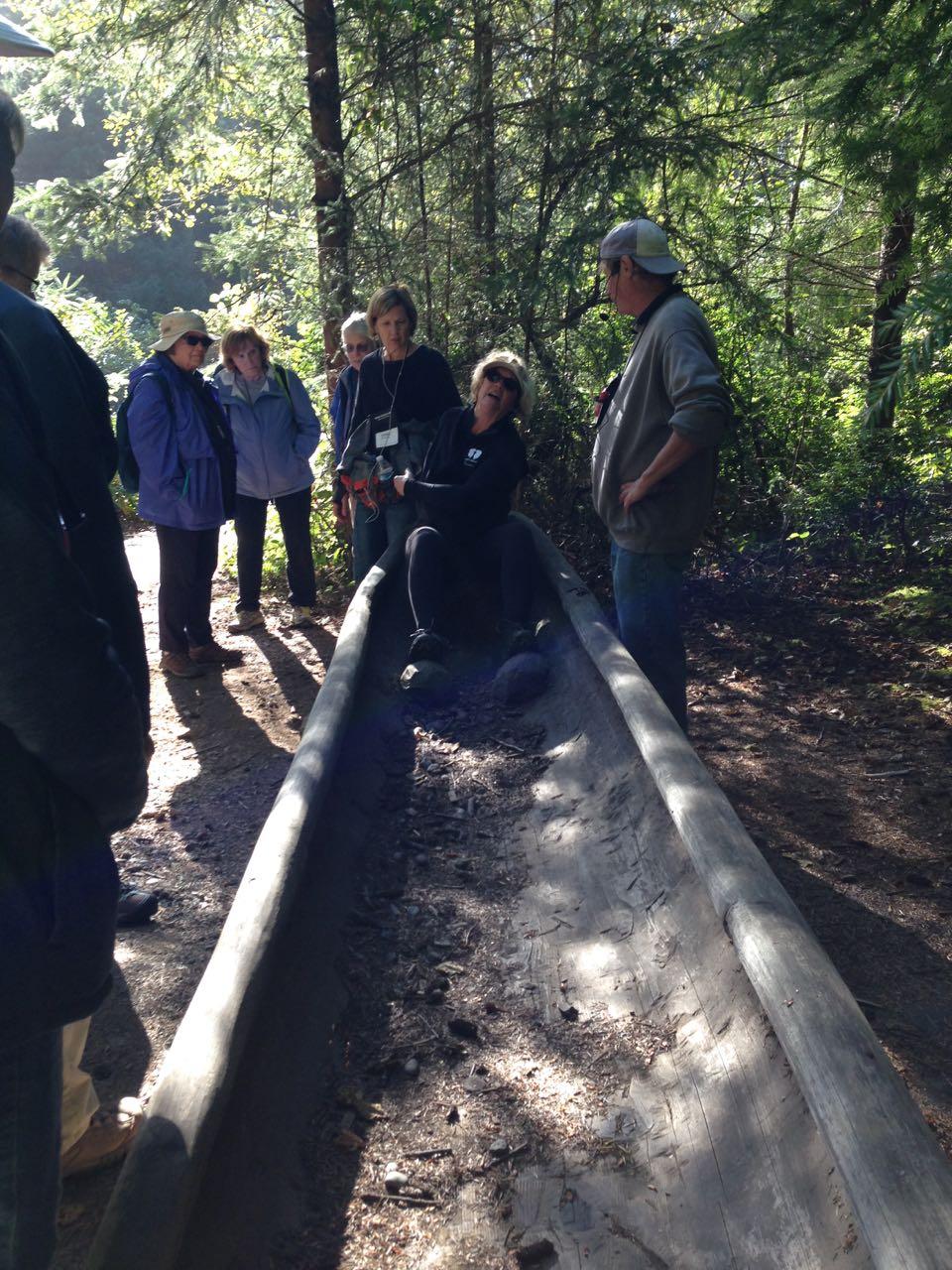 Redwoods 2017 10 08 199 Of 287