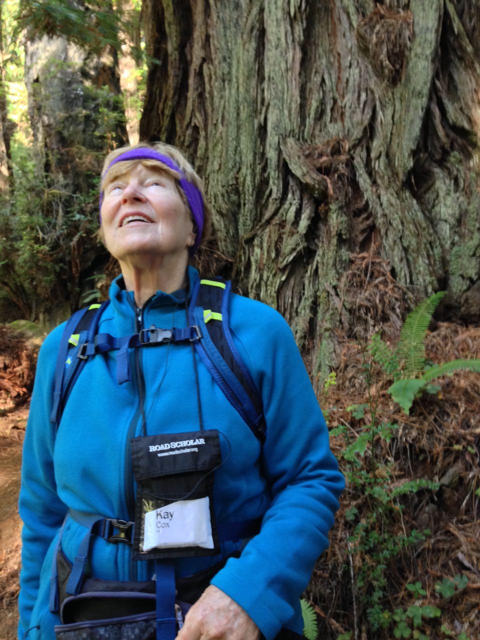 Redwoods 2017 10 08 219 Of 287