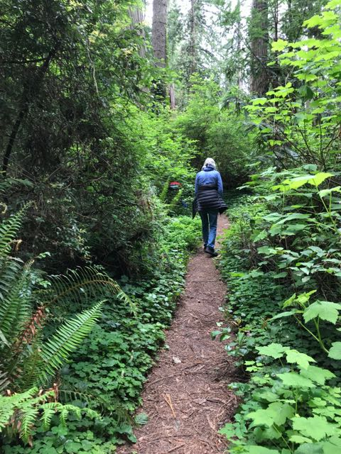 2018 05 20 Redwoods 118