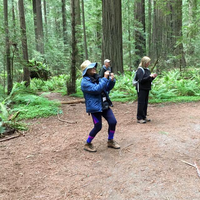 2018 05 20 Redwoods 13