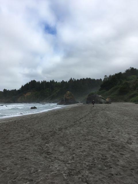 2018 05 20 Redwoods 138