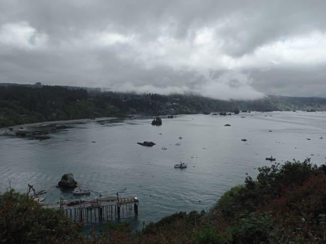 2018 05 20 Redwoods 147