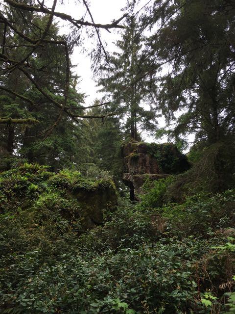 2018 05 20 Redwoods 160