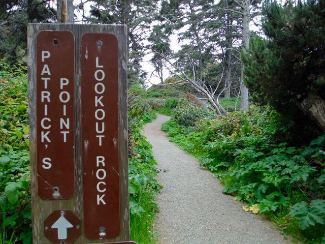 2018 05 20 Redwoods 163