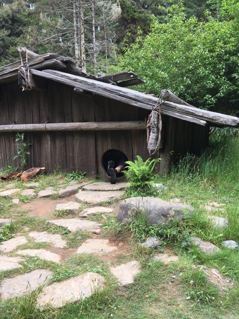 2018 05 20 Redwoods 185 1