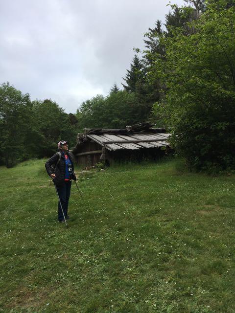 2018 05 20 Redwoods 188 1