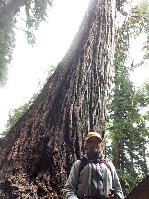 2018 05 20 Redwoods 257