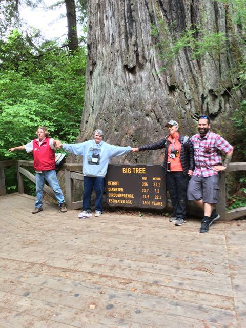 2018 05 20 Redwoods 261