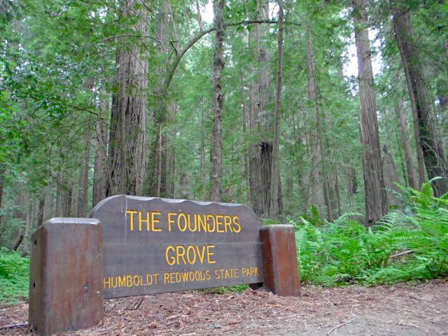 2018 05 20 Redwoods 4