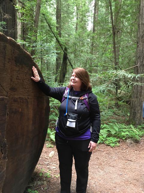 2018 05 20 Redwoods 41