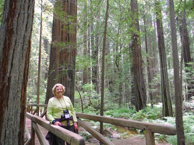 2018 05 20 Redwoods 66