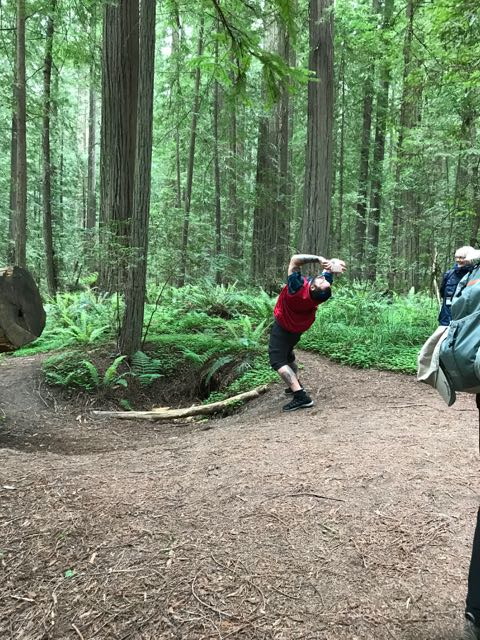 2018 05 20 Redwoods 7