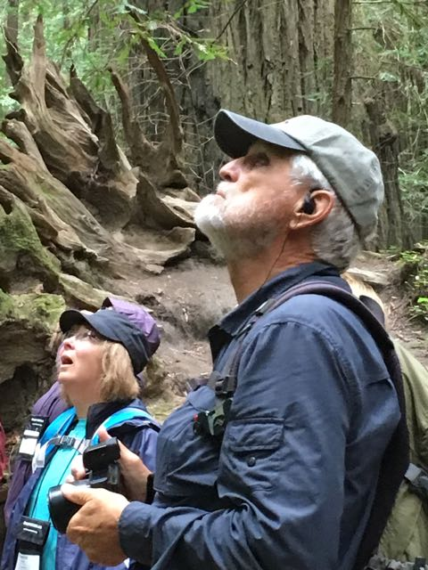 2018 05 20 Redwoods 9