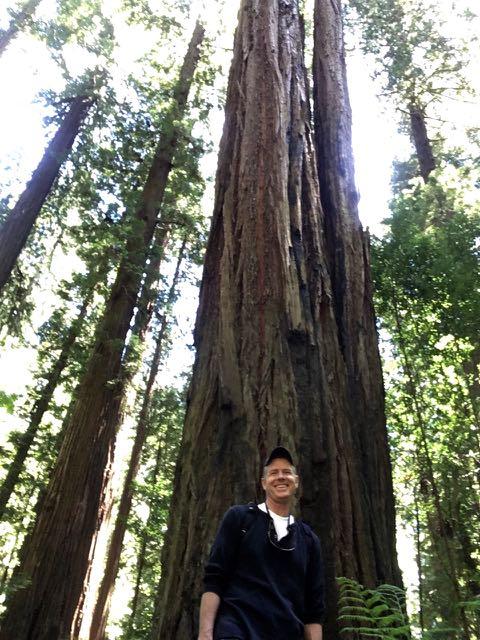 2018 06 03 Redwoods 13