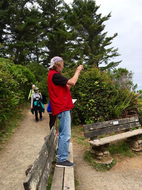 2018 06 03 Redwoods 164