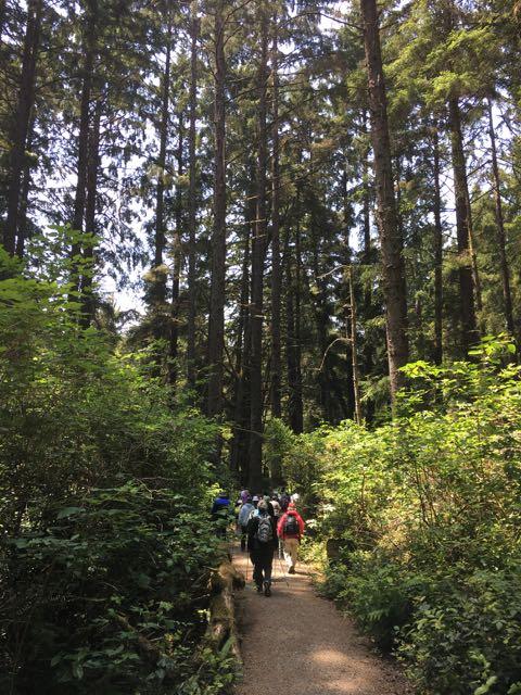 2018 06 03 Redwoods 175
