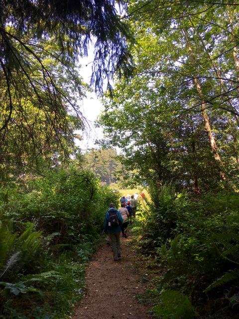 2018 06 03 Redwoods 181