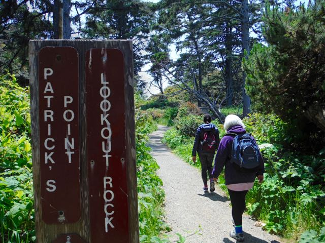2018 06 03 Redwoods 185
