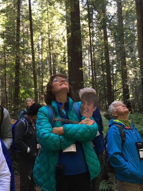 2018 06 03 Redwoods 19