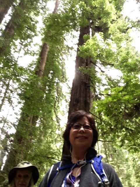 2018 06 03 Redwoods 242