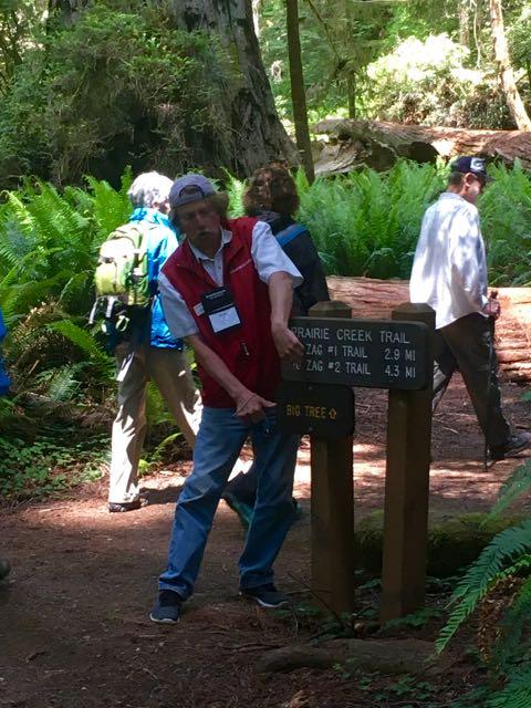 2018 06 03 Redwoods 273
