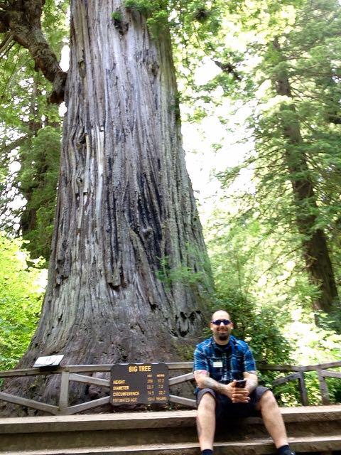 2018 06 03 Redwoods 289