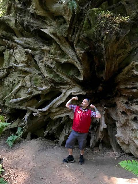 2018 06 03 Redwoods 29