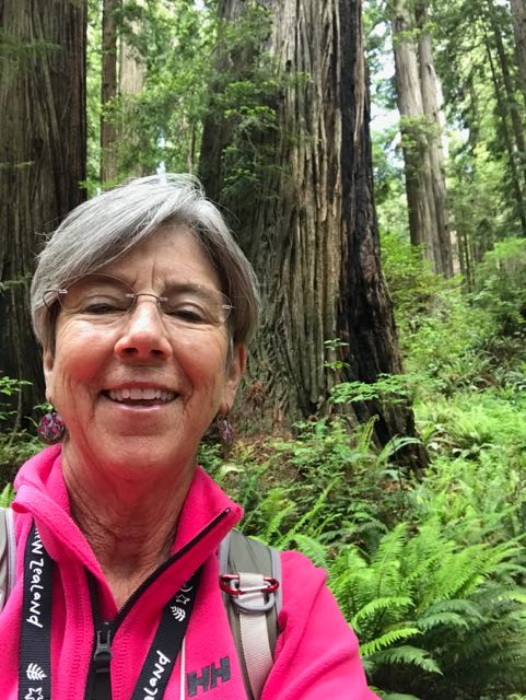 2018 06 03 Redwoods 293