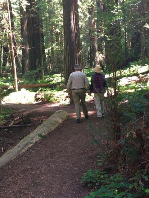 2018 06 03 Redwoods 67