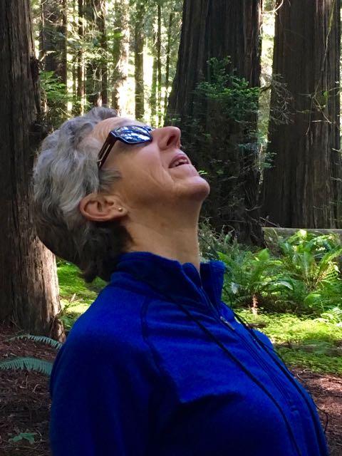 2018 06 03 Redwoods 8