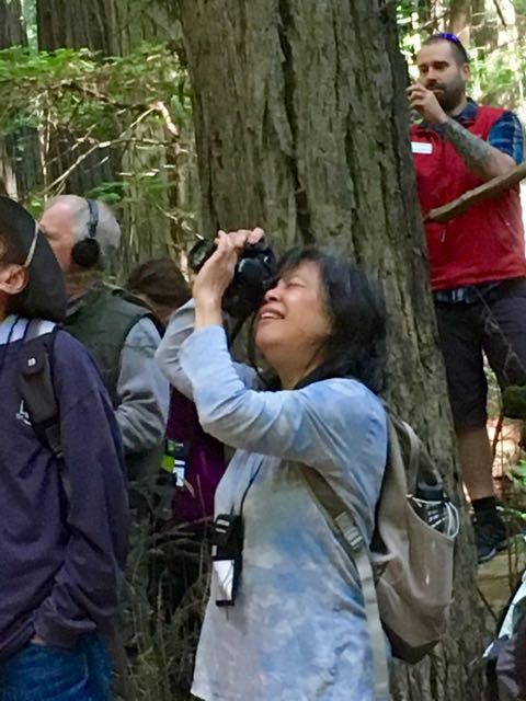 2018 06 14 Redwoods 14