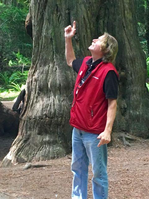 2018 06 14 Redwoods 15