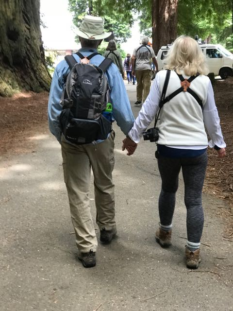 2018 06 14 Redwoods 153