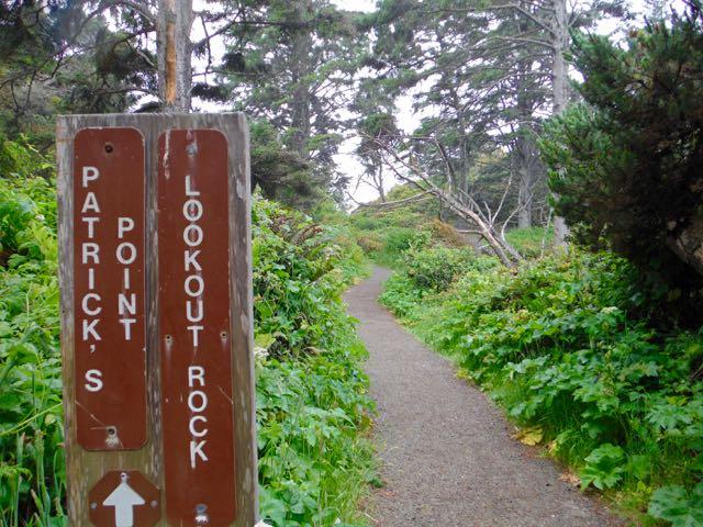 2018 06 14 Redwoods 196
