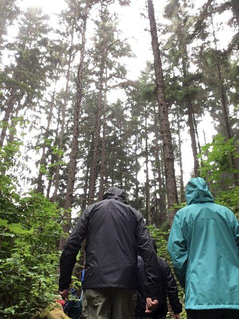 2018 06 14 Redwoods 197