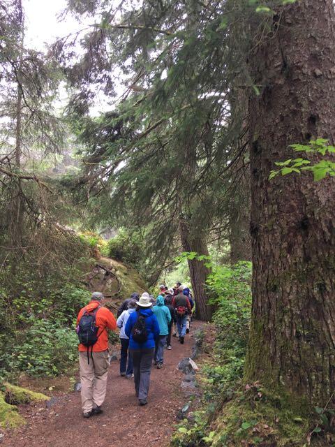 2018 06 14 Redwoods 198