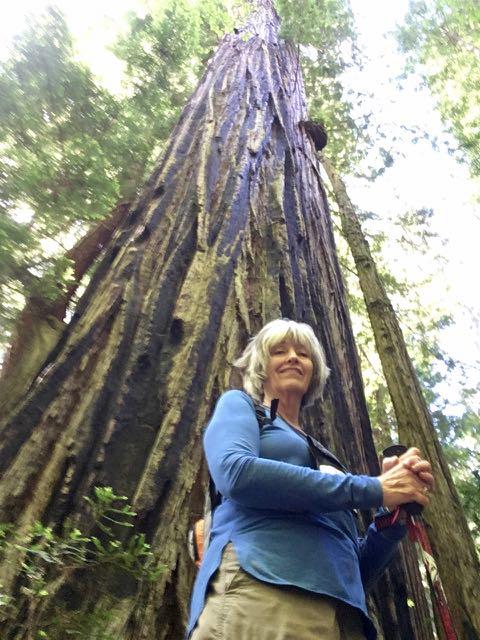2018 06 14 Redwoods 260