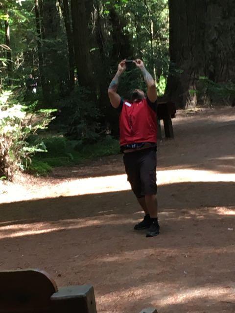 2018 06 14 Redwoods 27