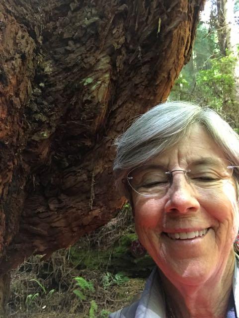 2018 06 14 Redwoods 294